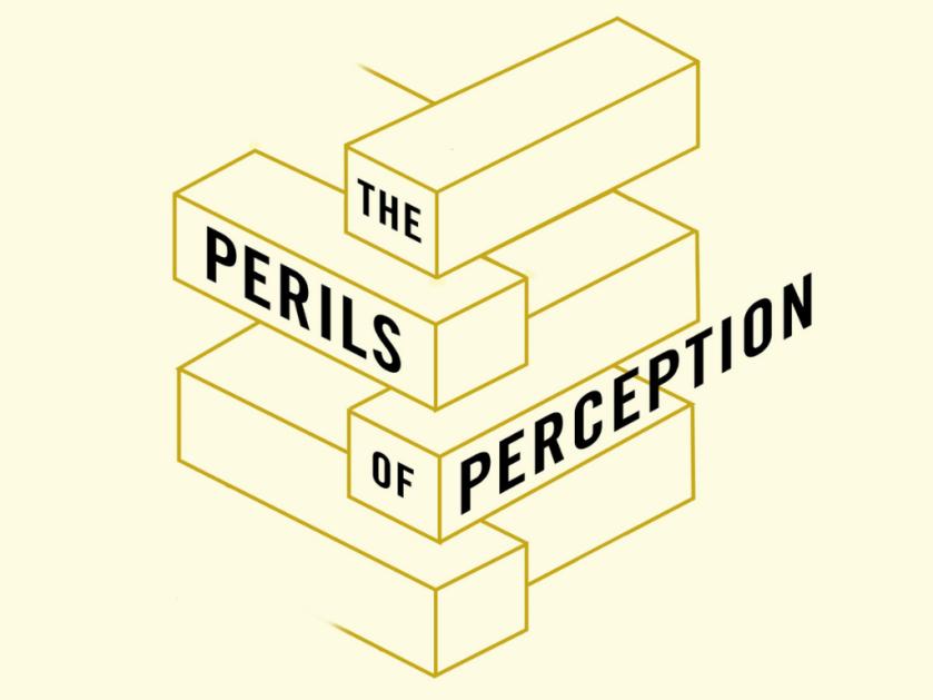 the-perils-of-perception