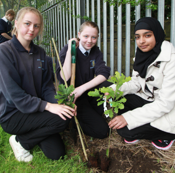 bruntcliffe_girls_plant Carbon Footprint website
