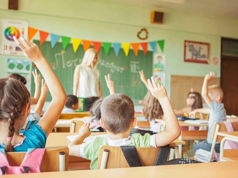 Primary School Students Raising Hands